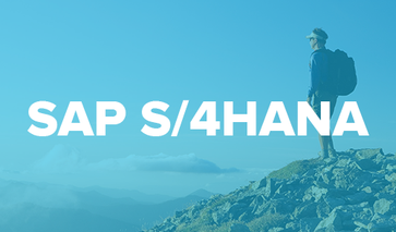 SAP S/4HANA Transition